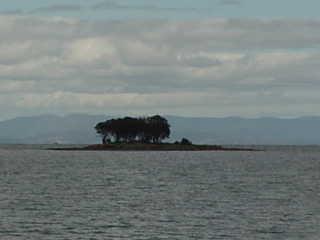 Spiaggia tasmana
