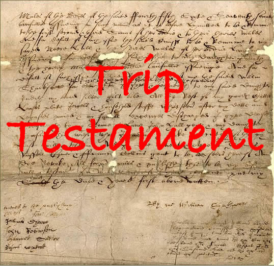 Testamento on-line
