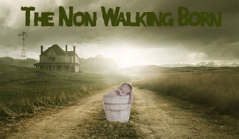 The-Non-Walking-Born